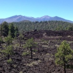 Lava fields/sunset crater